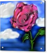 Rose Within The Clouds Acrylic Print