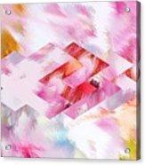 Roselique Dimension Acrylic Print