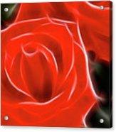 Roses-5814-fractal Acrylic Print