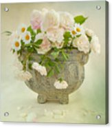 Roses And Daisys Acrylic Print