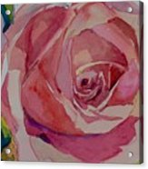 Roses And More  Acrylic Print