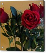Roses For Valentines Day Acrylic Print