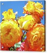 Roses Garden Summer Art Print Blue Sky Yellow Orange Acrylic Print