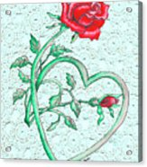 Roses Hearts And Lace Flowers Design  Acrylic Print