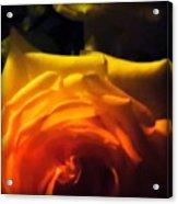 Roses In Moonlight 11 Acrylic Print