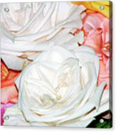 Roses Multi Color Acrylic Print
