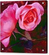 Roses Silked Pink Vegged Out Acrylic Print