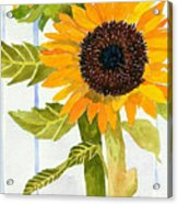 Rosezella's Sunflowers II Acrylic Print