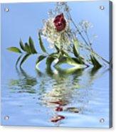 Rosy Reflection  Acrylic Print