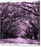 Rosy Road Acrylic Print