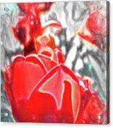 Rosy Swirl Acrylic Print
