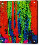 Rough Trees Dd5b Acrylic Print