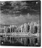 Round Lake State Park 2 Acrylic Print