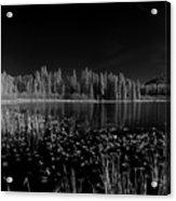 Round Lake State Park Idaho Acrylic Print