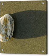 Round Rock And Shadow On Sand Dollar Acrylic Print
