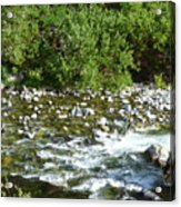 Rounded Rocks In A Rushing River Acrylic Print