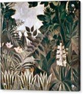 Rousseau: Jungle, 1909 Acrylic Print