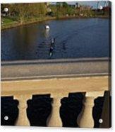 Rowinfg Towards The Weeks Bridge Charles River Harvard Square Cambridge Ma Acrylic Print