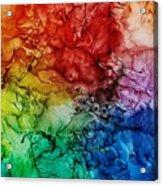 Roy G. Biv Combo Acrylic Print