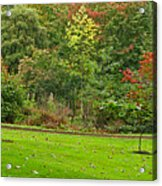 Royal Autumn Colors Acrylic Print