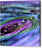 Soul Reflections Acrylic Print