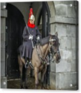 Royal Horseguard In London Acrylic Print