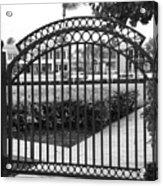 Royal Palm Gate Acrylic Print