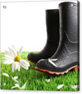 Rubber Boots With Daisy In Grass Acrylic Print