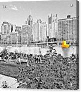Rubber Duck - Pittsburgh, Pennsylvania Acrylic Print