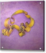 Rubberband Number Two Acrylic Print
