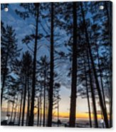 Ruby Beach Through The Trees Acrylic Print