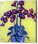 Ruby Red Orchids Acrylic Print by Sheila Tajima