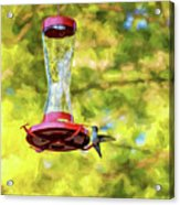 Ruby-throated Hummingbird 2 - Impasto Acrylic Print