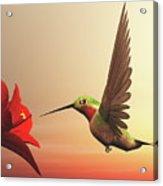 Ruby-throated Hummingbird - 3d Render Acrylic Print