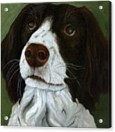 Rueger - Dog Portrait Oil Painting Acrylic Print