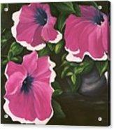 Ruffled Petunias Acrylic Print