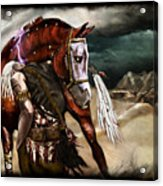 Ruined Empires - Skin Horse  Acrylic Print