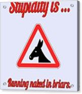 Running Bigstock Donkey 171252860 Acrylic Print