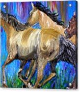 Running Colors Acrylic Print