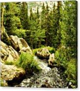 Running River Acrylic Print