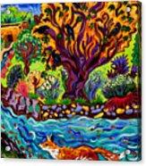 Running River, Running Fox Acrylic Print