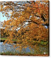 Rural Autumn Country Beauty Acrylic Print