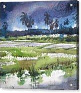 Rural Bengal 5 Acrylic Print