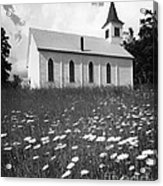 Rural Church In Field Of Daisies Acrylic Print