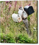 Rural Delivery No 4 Acrylic Print