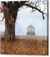 Rural Farmhouse And Large Tree Acrylic Print