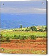 Rural Landscape In Tanzania Acrylic Print