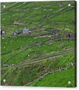 Rural Landscape On Dingle Peninsula Acrylic Print