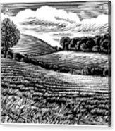 Rural Landscape, Woodcut Acrylic Print by Gary Hincks