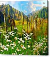 Rural New Zealand Acrylic Print